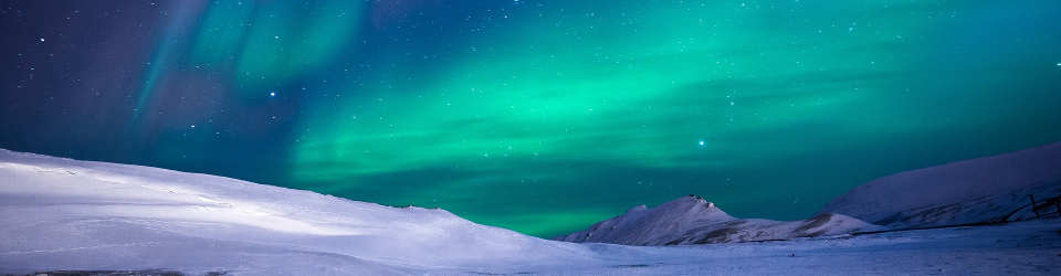 Arctic Watch